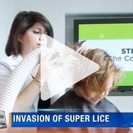 Super Lice in the news